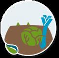 Agrea_Iconen_schaduw-sector-tuinbouwgroente